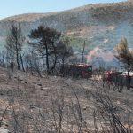 Μεγάλη μάχη με τις φλόγες στο Μαραθώνα και στην Εύβοια