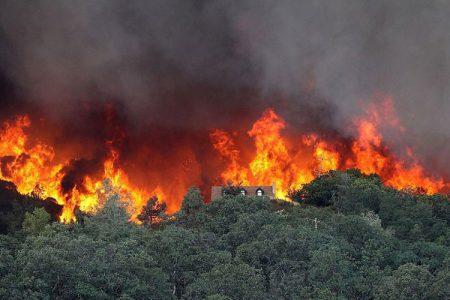 Σε εφαρμογή το πρόγραμμα δασοπροστασίας στο Ν. Τρικάλων – Δασικές πυρκαγιές 2016