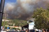 Incalculable Ecological Damage Caused by Wildfire in Northern Evia