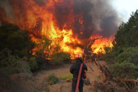 Θρήνος στο πυροσβεστικό σώμα. Νεκρός πυροσβέστης στη φωτιά στο Παρόρι Βοιωτίας
