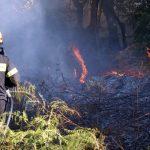 Κρήτη: Οι πυροσβέστες ευχαριστούν εκείνους που τους βοήθησαν στην κατάσβεση της μεγάλης πυρκαγιάς