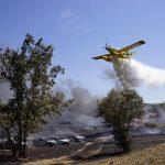 Τετρακόσια εικοσιδύο οχήματα κάηκαν από πυρκαγιά σε φεστιβάλ