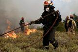 Δωρεές προς Εθελοντές Πυροσβέστες και Εθ. Σωματεία Δασοπυρόσβεσης – Διάσωσης